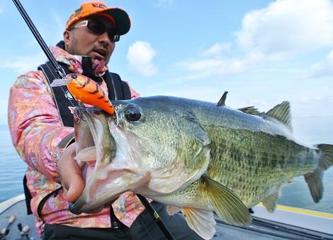 アスカ60で春らしい釣りを満喫‼