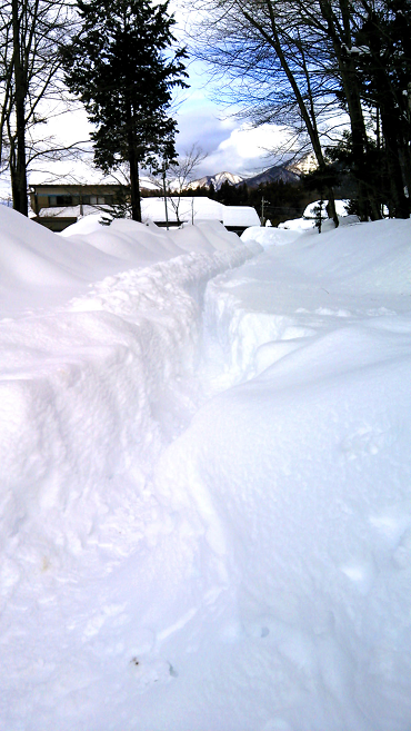 吹雪の吹き荒れるフィールドでゲットした50UP‼
