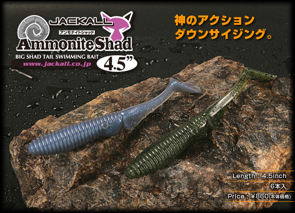 Ammonite Shad 4.5″