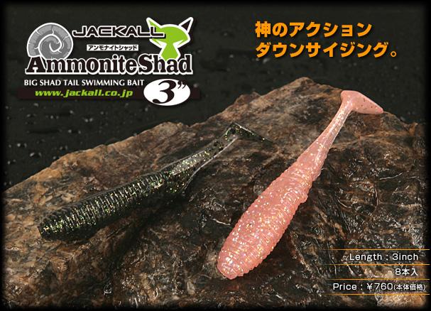 Ammonite Shad 3″