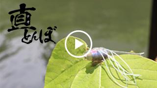 ナオトンボ解説動画/川口直人