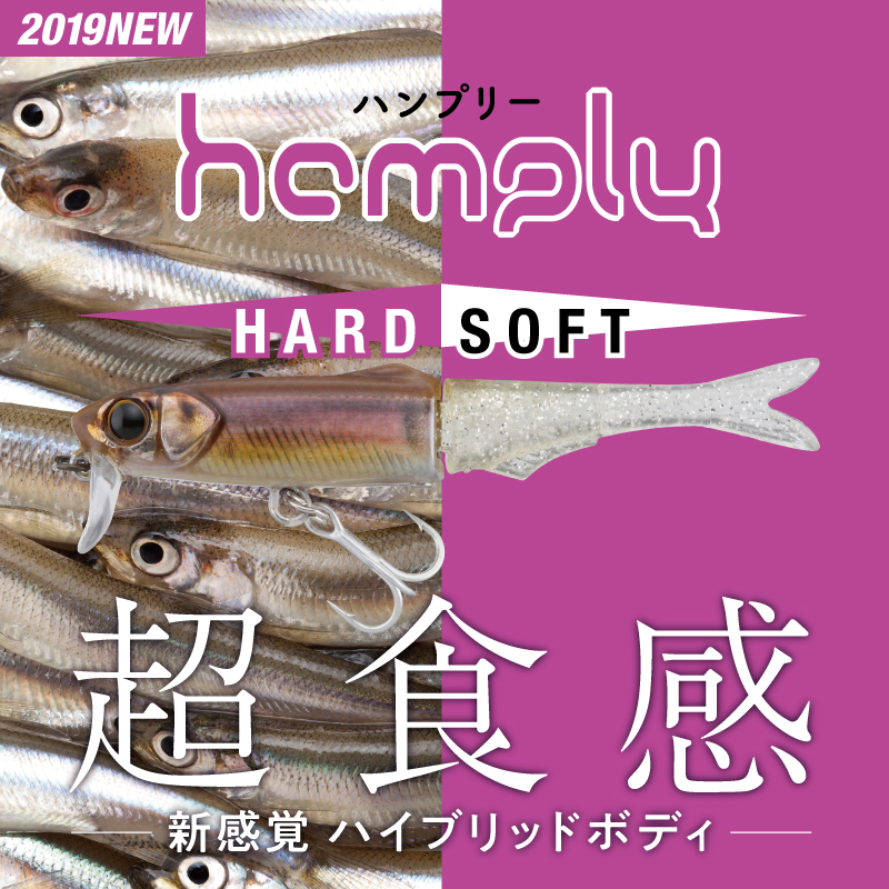 HAMPLY