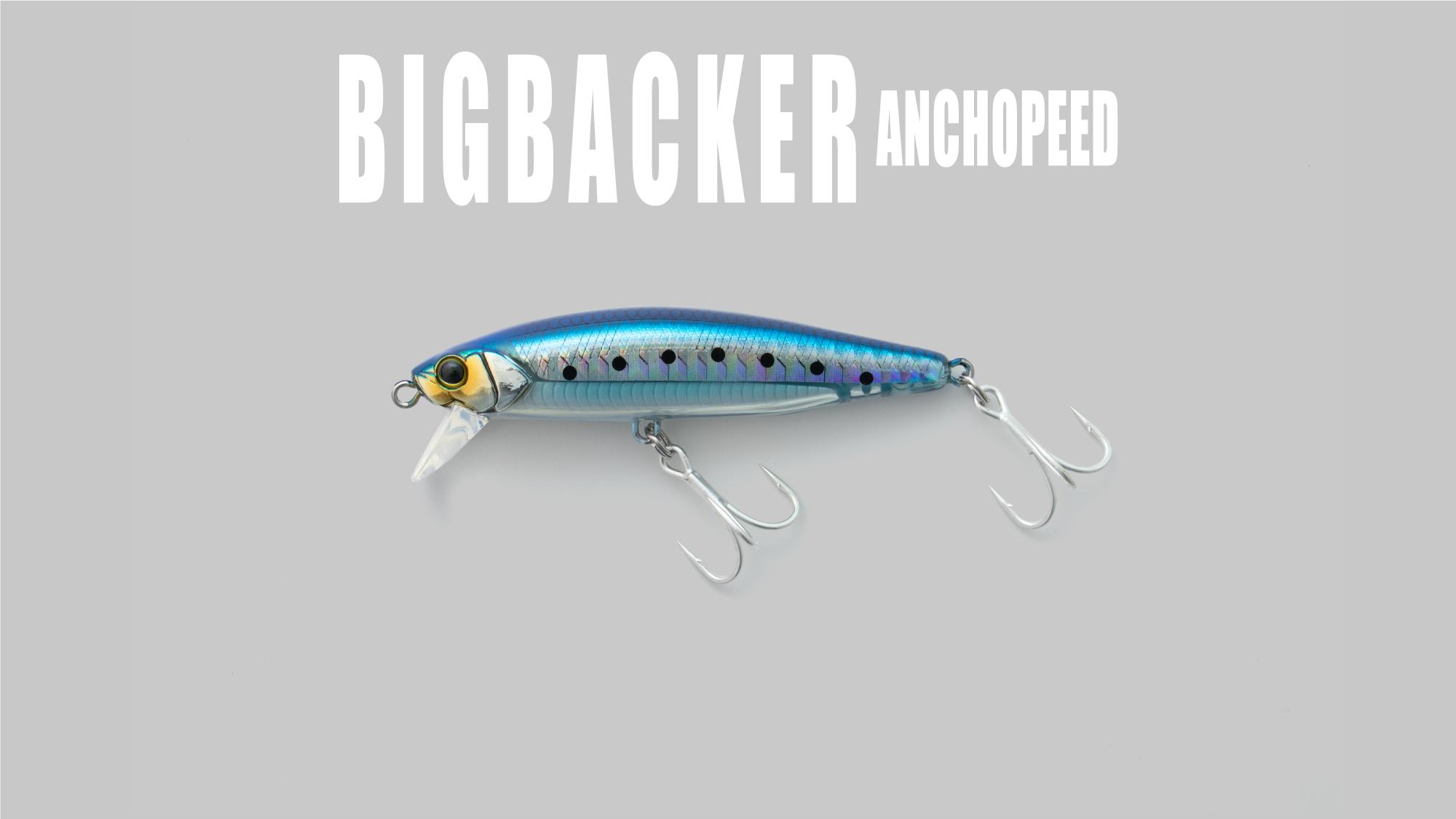 ビッグバッカーアンチョピード BIGBACKER ANCHOPEED /ビッグバッカーアンチョピード