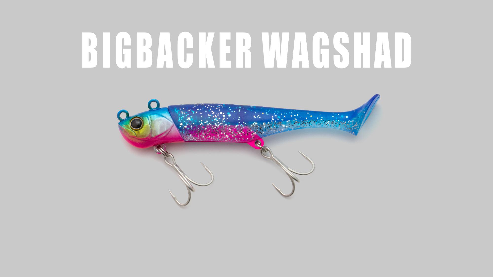 ビッグバッカー ワグシャッド BIGBACKER WAGSHAD / ビッグバッカー ワグシャッド