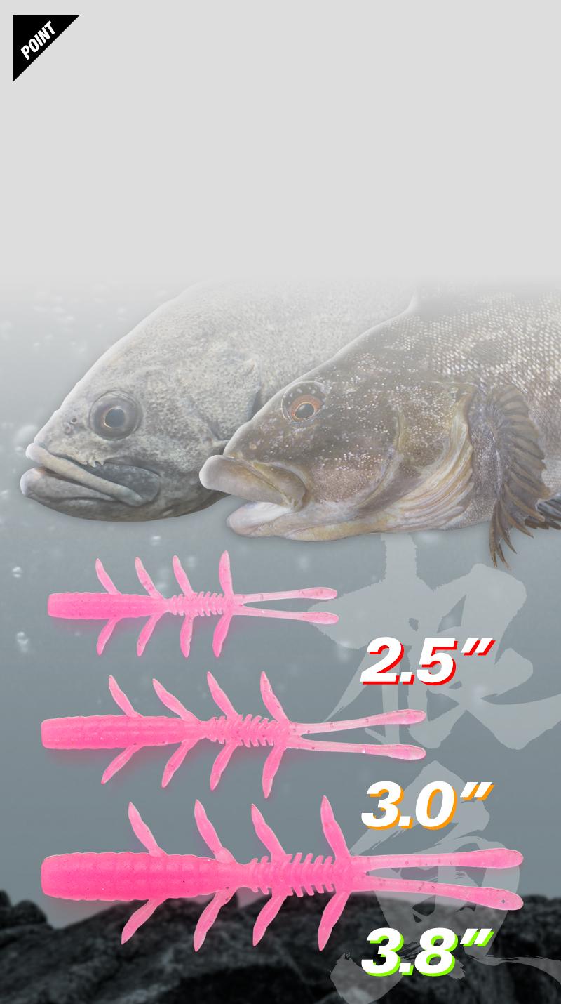 シザーコームロック Scissor Comb Rock Fish / シザーコームロックフィッシュ