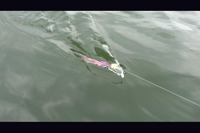 集魚効果抜群のアクション