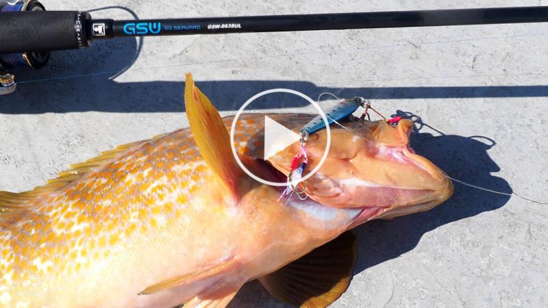【スーパーライトジギング】様々な魚種がターゲット。ライトタックルで手軽に狙えるSLJとは? ~九州実釣編~