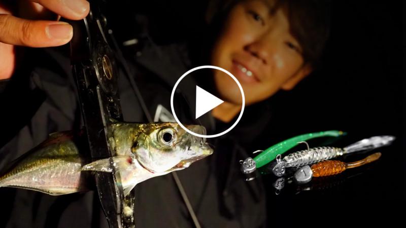 0:01 / 15:33 【アジング】一匹でも多く釣る為のアジングローテーション法とは?/ 杉山代悟