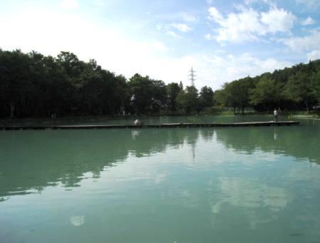 小林紀之氏よりレポートいただきました/白馬八方ニレ池フィッシングセンターへ家族とプチ釣行